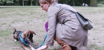 Hundeschule Berlin Anubys Hundeverhaltenszentrum